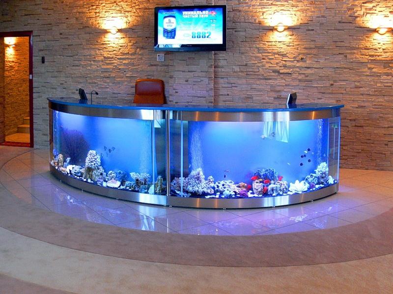 Украшение аквариума своими руками