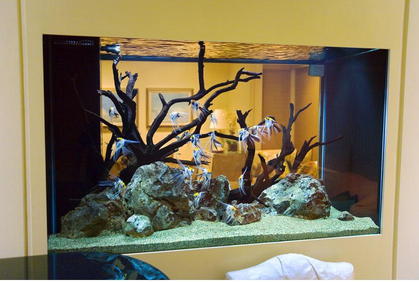 Как декорировать домашний аквариум своими руками